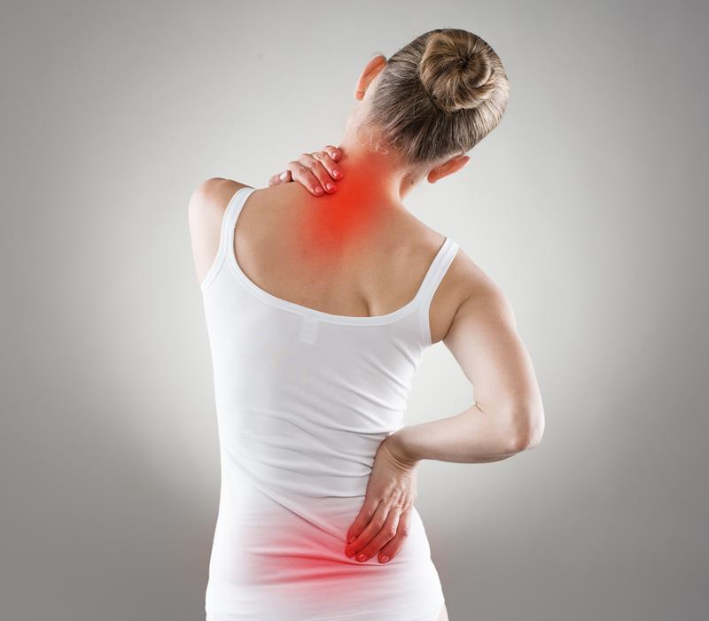 chiropractic services  Michigan City, IN